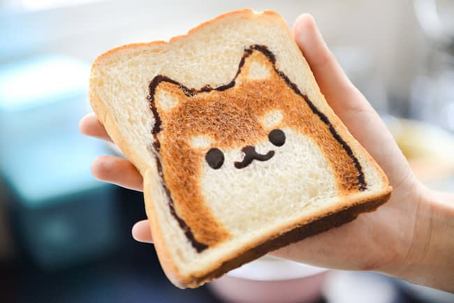 person holding a slice of toast