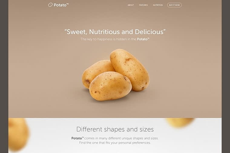 image_of_example_landing_page