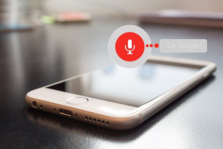 voice controlled search